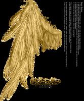 Draped Wing - Golden by Thy-Darkest-Hour