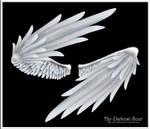 Wrapped Wings - Silver by Thy-Darkest-Hour
