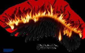 Wings on Fire - Black 02 by Thy-Darkest-Hour