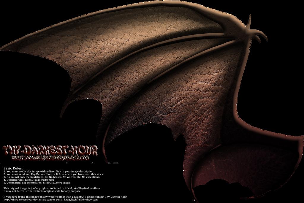 Dragon Wings 02 by Thy-Darkest-Hour