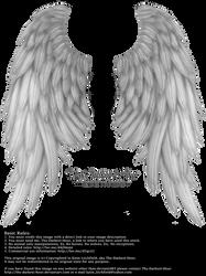 Daydream Wings - Silver by Thy-Darkest-Hour