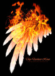 Simplistic Wing - Fire by Thy-Darkest-Hour