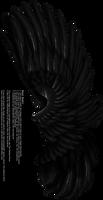 Dual Upright Wing - Black by Thy-Darkest-Hour