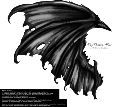 Hellraiser Wings by Thy-Darkest-Hour