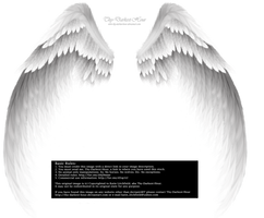 Arch Angel Wings - Silver-White by Thy-Darkest-Hour