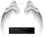 Arch Angel Wings - Silver-White by Thy-Darkest-Hour