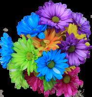 Daisy Bouquet PNG by Thy-Darkest-Hour
