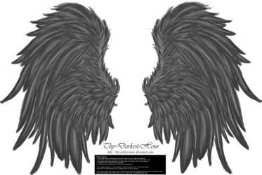 Frill and Fluff Wings - Gray by Thy-Darkest-Hour
