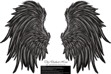 Frill and Fluff Wings - Silver by Thy-Darkest-Hour