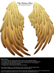 Solace Wings - Golden by Thy-Darkest-Hour