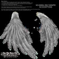 Enchantress Wings - Silver by Thy-Darkest-Hour