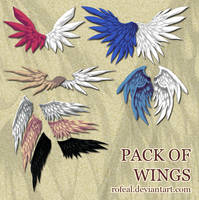 Resources Pack Of Wings by Rofeal