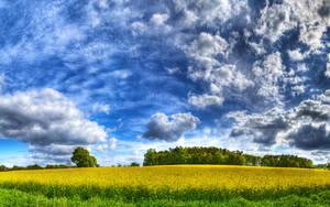 Summerbreeze by myINQI