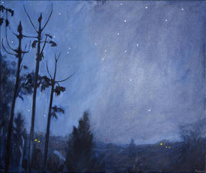 Nocturnal by tamino