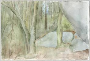 Woodland by tamino