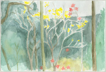 ipe-amarelo by tamino