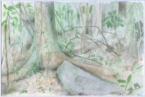 in the woods by tamino