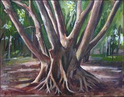 Trunks and Roots by tamino