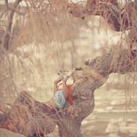foxline by oprisco