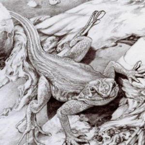 Ensomniac's Profile Picture