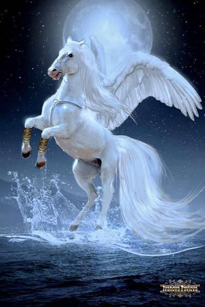 Pegasus by IPNatali