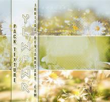 290816.SHARETexture.YLWFLW by JuKiiDA