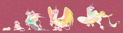 Queen Celestia Age Chart by ThisCrispyKat