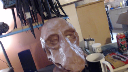 The Dark Crystal  Mystique Head step 1 front by Norbert2009