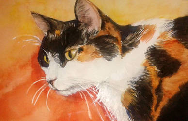 Watercolour Kitty by Alda-Rana
