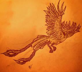 Phoenix by LaChasseresse