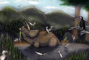 JP NATIVES: Final results by Taliesaurus