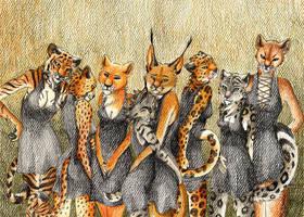 The Cats by RaikaDeLaNoche