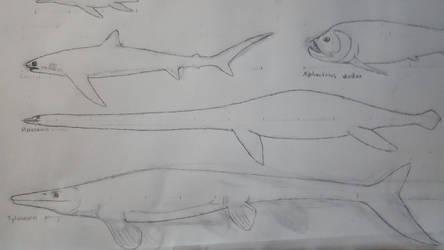 Niobraran Marine Fauna (w/ updated Tylosaurus) by Braindroppings1