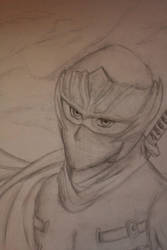 Ryu Hayabusa by Skycells