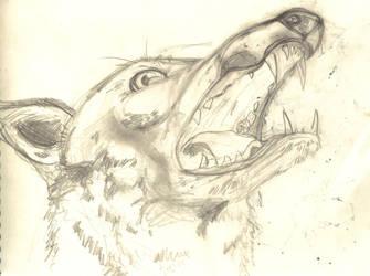 simian jackal by elpajo