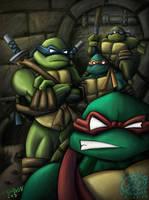 Teenage Mutant Ninja Turtles by ninjatron