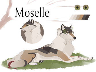 [CoN] Moselle by silk-fur