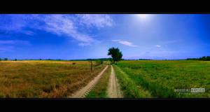 Meadow Landscape by NorbertKocsis