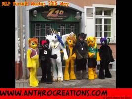 MLP Fursuit meetup 2015 May by AtalontheDeer