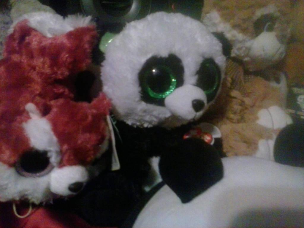 fb88e2ab135 My beanie boo bamboo panda plush jpg 1024x768 Benie boo panda plushie