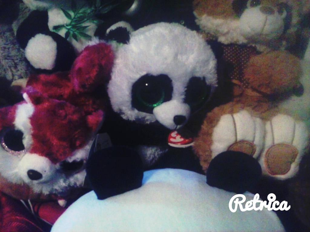 97bee1952d2 My beanie boo bamboo panda plush in momento us jpg 1024x768 Benie boo panda  plushie