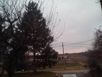 Overcast in Prnjarovec 15 by PoKeMoNosterfanZG