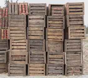 Wooden Cargo by rbarigal