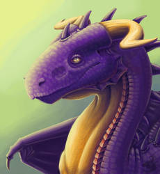 Portrait of the purple dragon by Behane