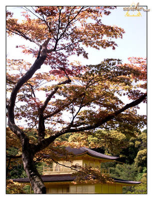Kyoto Golden Pavilion by eerokin