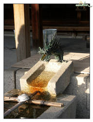 dragons sometimes spit water by eerokin