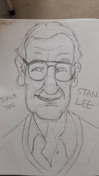 Thank you Stan Lee by DarylT