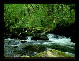 Golitha Falls....2 by Pjharps
