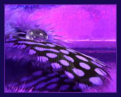 .:Purple:. by Pjharps
