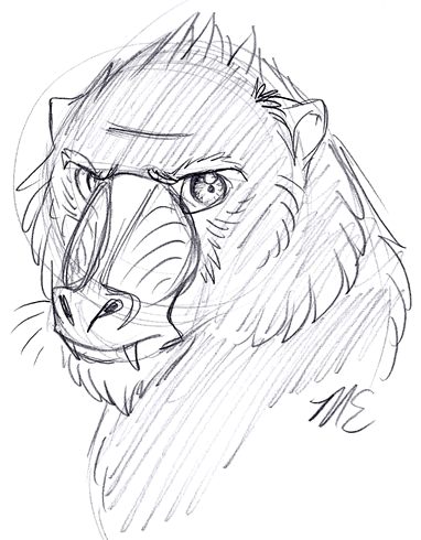 Dac 7 30 11 Mandrill By Therougecat On Deviantart